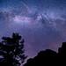 Milky Way @ Zion National Park {Explore}