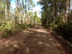 Random Dirt Road