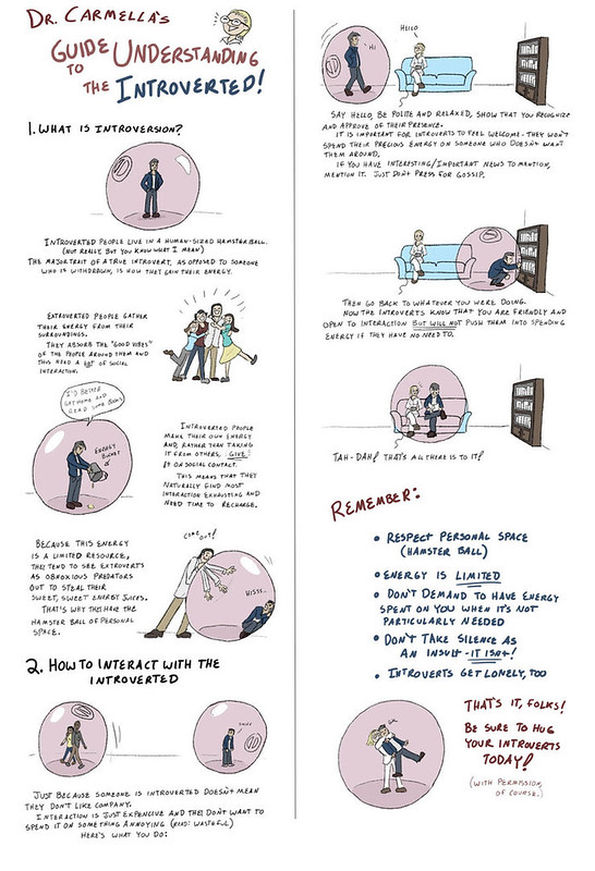 how_to_live_with_introverts_guide_printable_by_sveidt