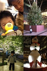 東京ミッドタウンのとらちゃん (2012/11/22)