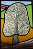 beech tree front door stained glass panel