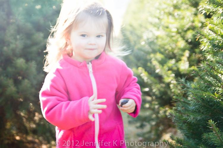 ChristmasTreeFarm12-7813.jpg