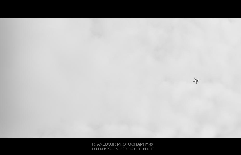Fly B&W.