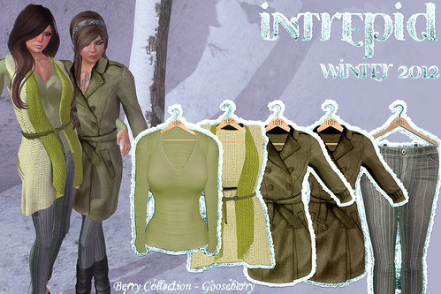 NEW!!! Intrepid:: Winter 2012 Gooseberry