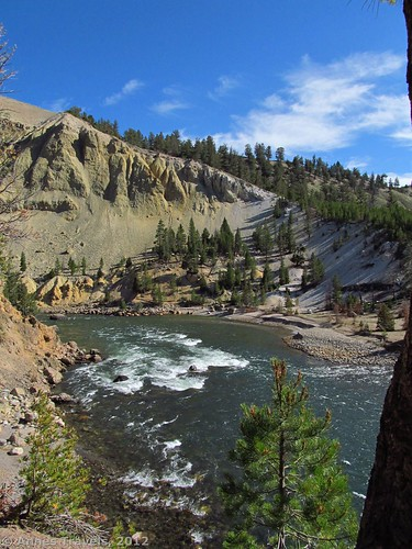 Looking downstream along the Yellowstone River from the lower viewing area, Tower Falls Trail, Yellowstone National Park, Wyoming