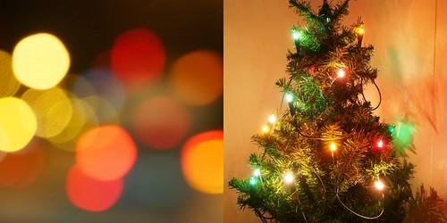 Joulukuuusi