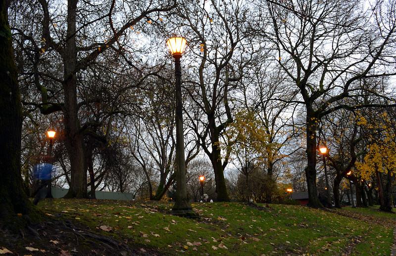 Park at Dusk