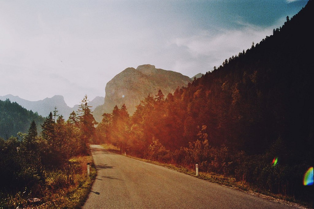 Film photography inspiration by Nicola Odemann