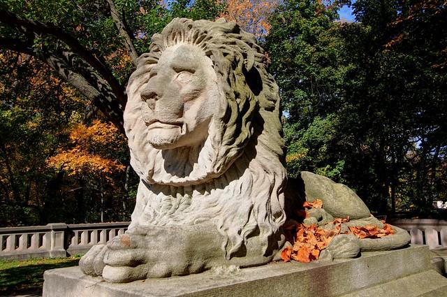 A Milwaukee Lion
