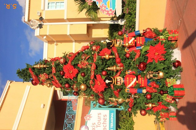 noch mehr Weihnachtsbäume :-)