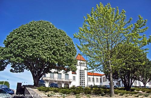 Câmara Municipal de Tábua - Portugal
