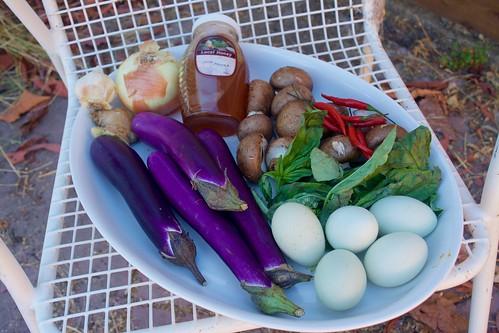 Wild Honey Egg Eggplant