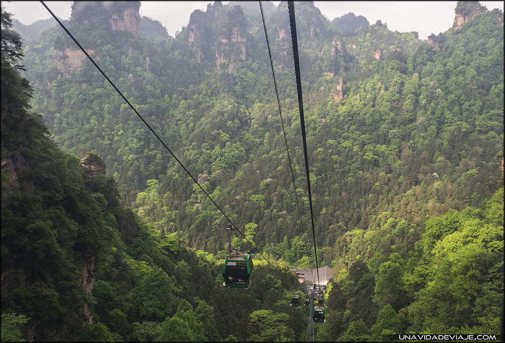 Guia de Zhangjiajie china