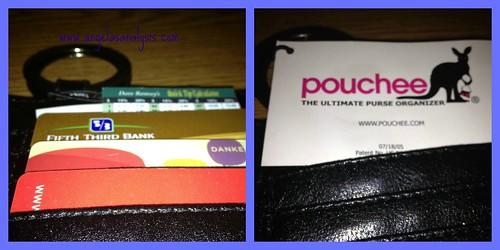 purse pic 1
