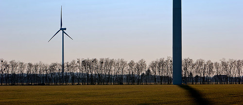 blue trees winter sky brown tree 20d field canon landscape eos hungary wind panoramic clear turbines