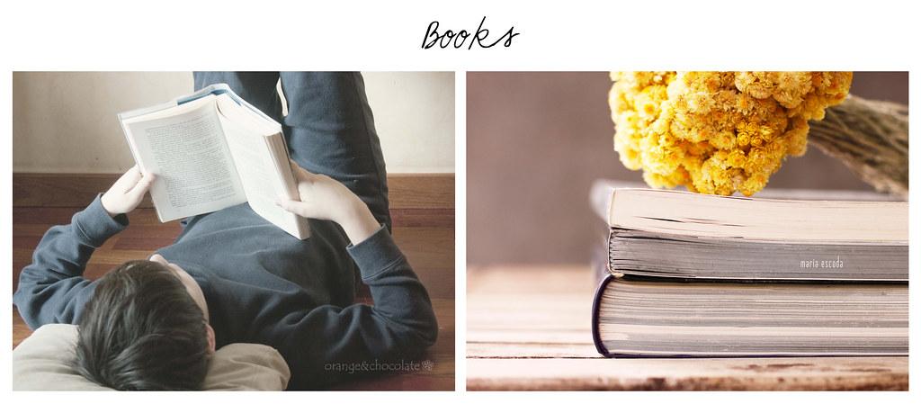 books dipi
