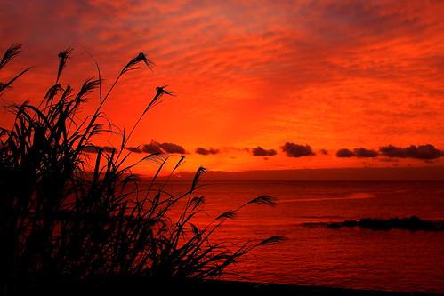 autumn sea japan sunrises kanagawa japanpictures landscapeofjapan yugawarasunrise rebelt3i600d japantouristphotos