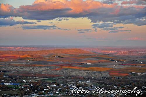 road city november sunset red mountain fall colors photography washington vineyard nikon hill cities 7 11 grade winery blanca wa coop tri terra 2012 benton d90 mcbee