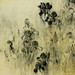 鳶尾花Ⅶ.木炭、水彩、紙本.55x47cm.2009