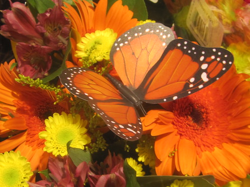 Butterfly Decor and Flowers