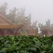 Le temple côtoyant les jardins de M. Chen