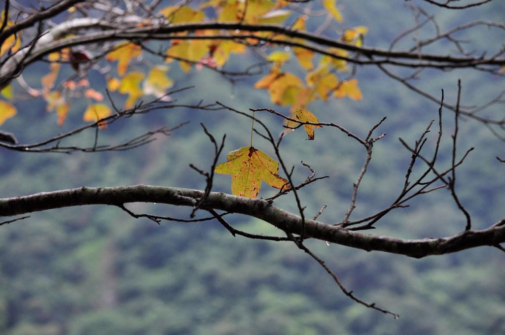 Taroko National Park 太鲁阁国家公园 ...