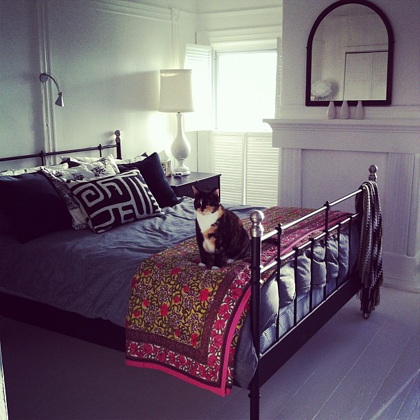 good morning, Ginger : our bedroom #home