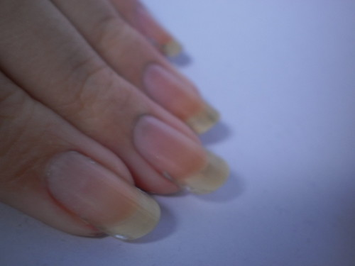 PB240002 by Nails1820
