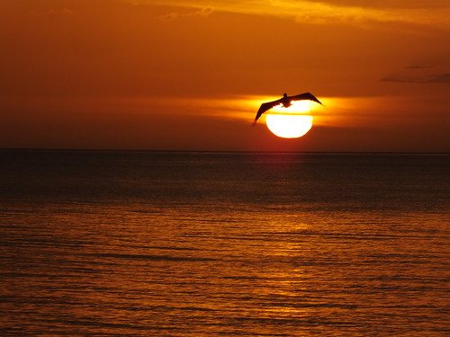 sunset florida finepix fujifilm sanibel 076 andylatt hs20exr