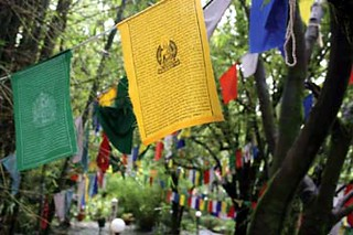 Tibetan prayer flags can be found covering the Dharmsala  region. They are said to promote wisdom, strength, peace, and compassion.