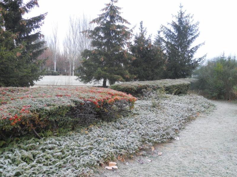 Jardineros en acci n jardines de invierno for Jardines de invierno fotos