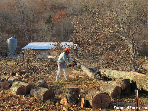 Chainsaw Joe turning a fallen oak tree into fuel for the wood furnace - FarmgirlFare.com