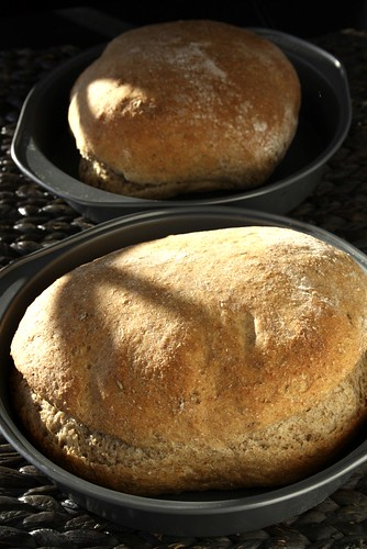 Breadmaker Caraway Rye Bread Recipe Suzie The Foodie