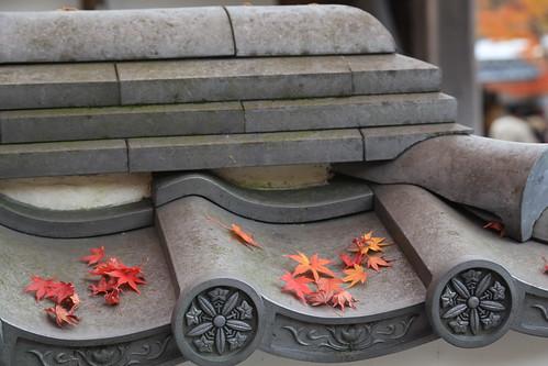 Autumn Eikando 永観堂