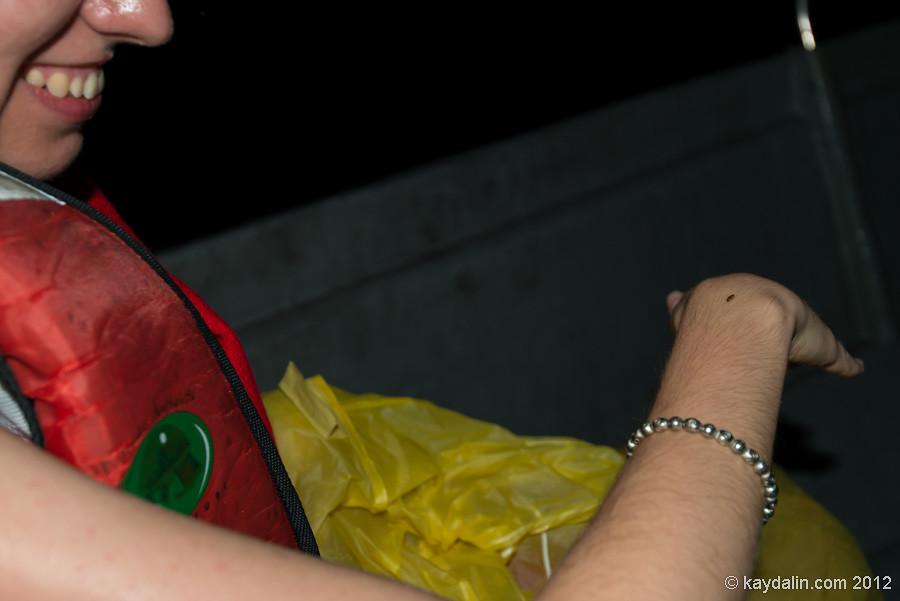 светлячок на руке
