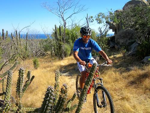 Baja Biking