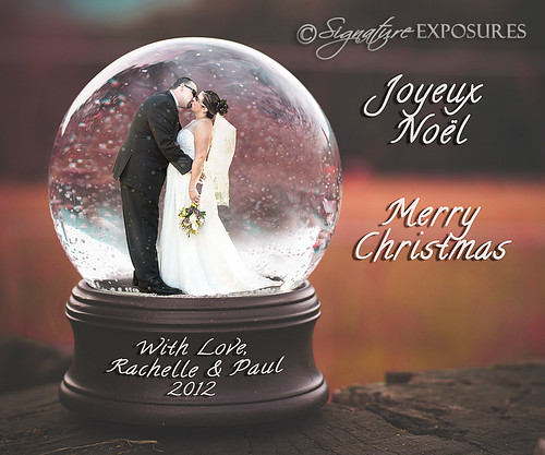 paul and rachelle snowglobe5