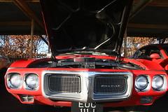 auto show(0.0), convertible(0.0), race car(1.0), automobile(1.0), automotive exterior(1.0), vehicle(1.0), automotive design(1.0), antique car(1.0), land vehicle(1.0), muscle car(1.0), pontiac gto(1.0), sports car(1.0), motor vehicle(1.0),