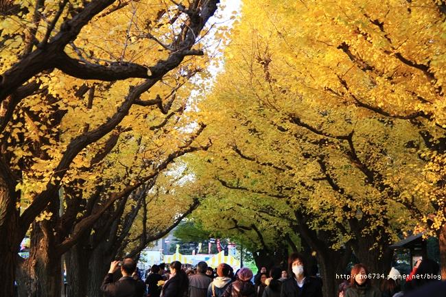 20121206_XmasTokyo_1407 f