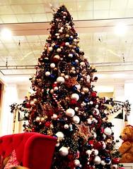 Weihnachtszeit 2012 21