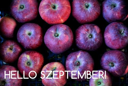 hello_szeptember2016