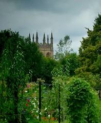 ~A glimpse of Magdalen College Oxford~ HFF