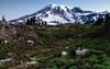 Mt Rainier At Dawn