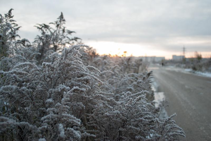 Oh my, it seems a bit early for snow already! Skaisti.  DSC_2068