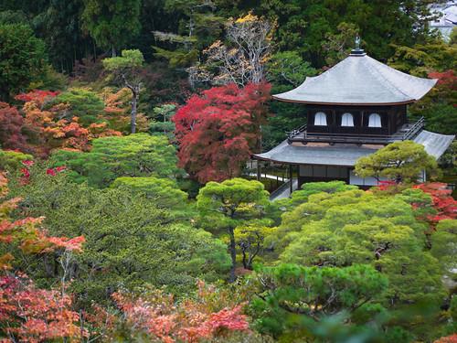 Ginkakuji Temple by hyossie