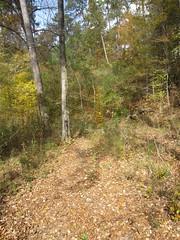 26. The Hiking Trail