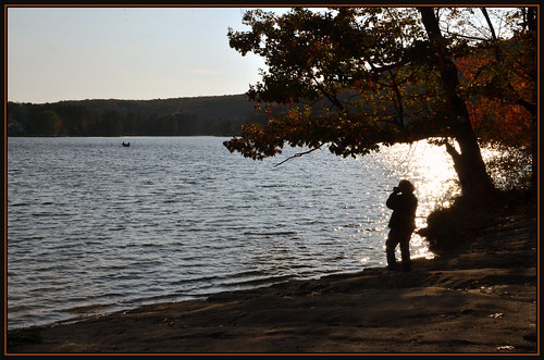 november autumn lake fall nature silhouette seasons shore nikond7000