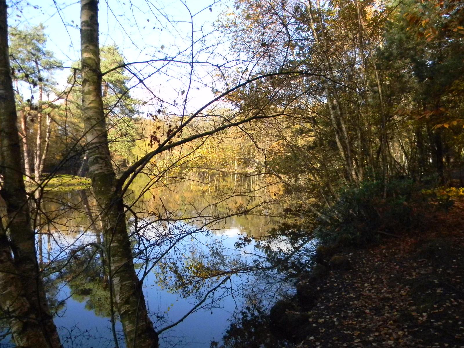 Heath Pond Crowthorne to Sandhurst (avoiding Eversley)