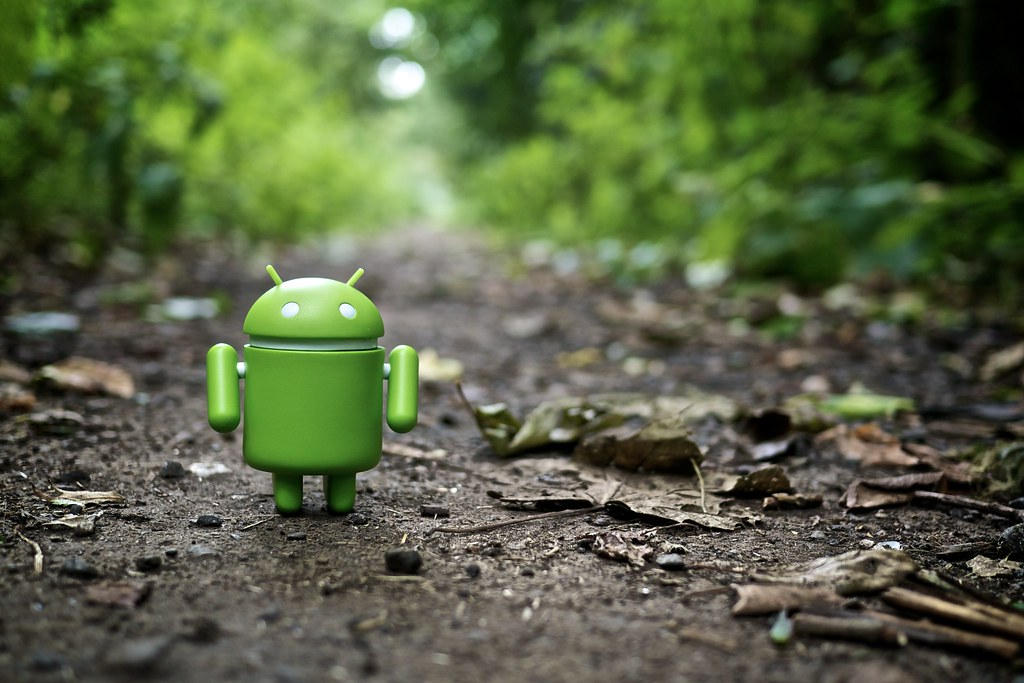194 of 365 - Android in the Wild