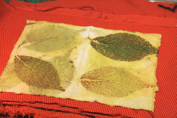 Leaf Monoprinting 16-07